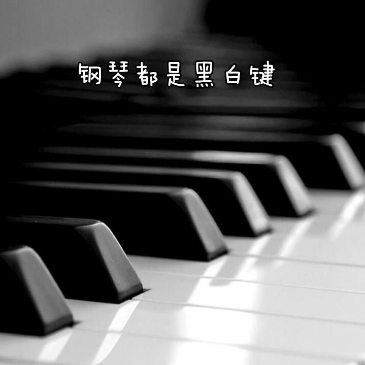 钢琴都是黑白键的个人空间
