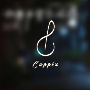 张碧晨《骗》高度还原-C调版-Cuppix改编(如果声音不记得 插曲)