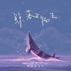 鲸落万物生【独奏】- 灼夭、小田音乐社 -钢琴谱