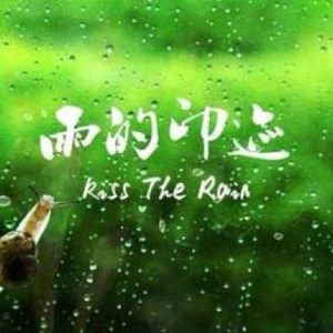 kiss the rain 雨的印记 C调简易版