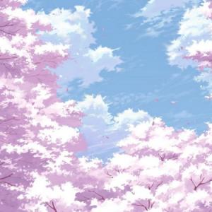 小樱-饭碗的彼岸