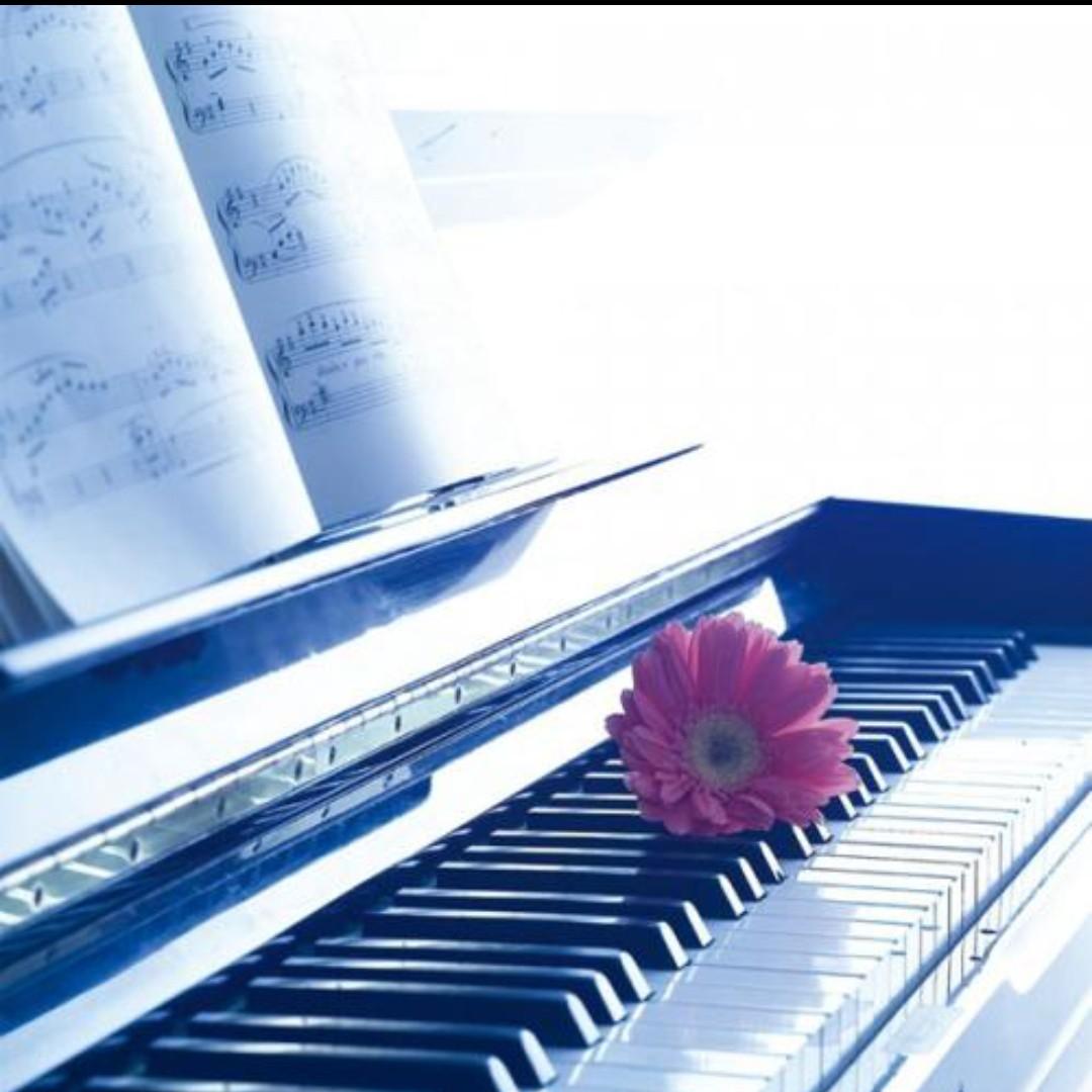 快乐音符的个人空间
