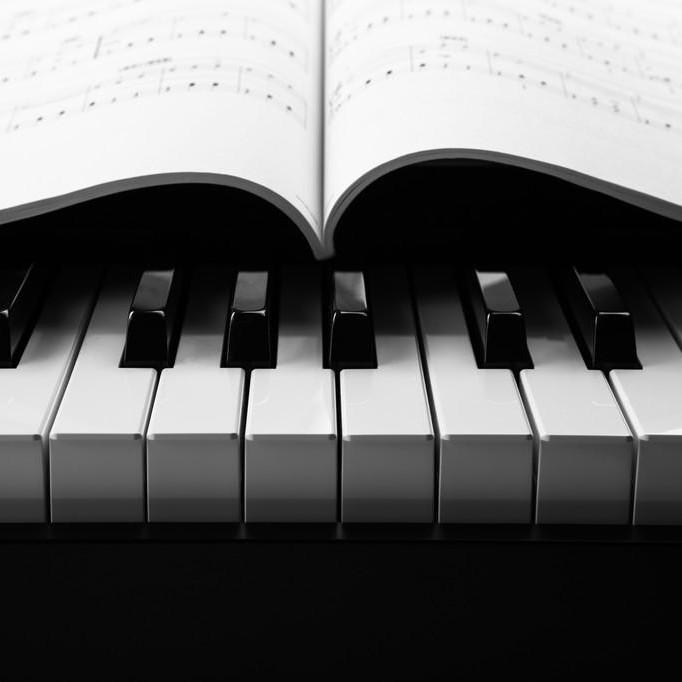 Seashells Music的个人空间