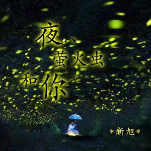 夜、萤火虫和你钢琴谱