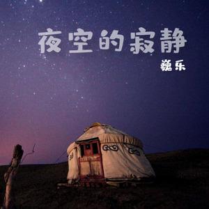 夜空的寂静-赵海洋(夜色钢琴)