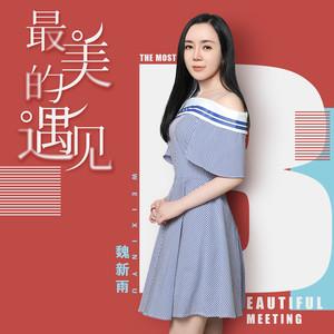 最美的遇见 徐佳莹(电视剧《凉生,我们可不可以不忧伤》情感主题曲》)