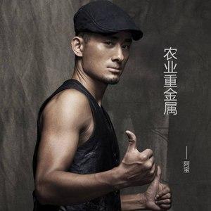 山丹丹花开红艳艳(C调版)钢琴谱