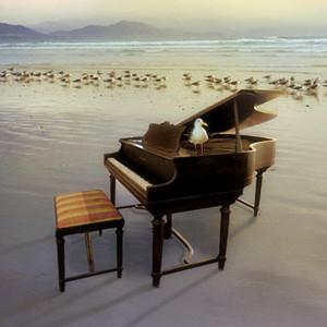 卡农-(情感100%)钢琴谱