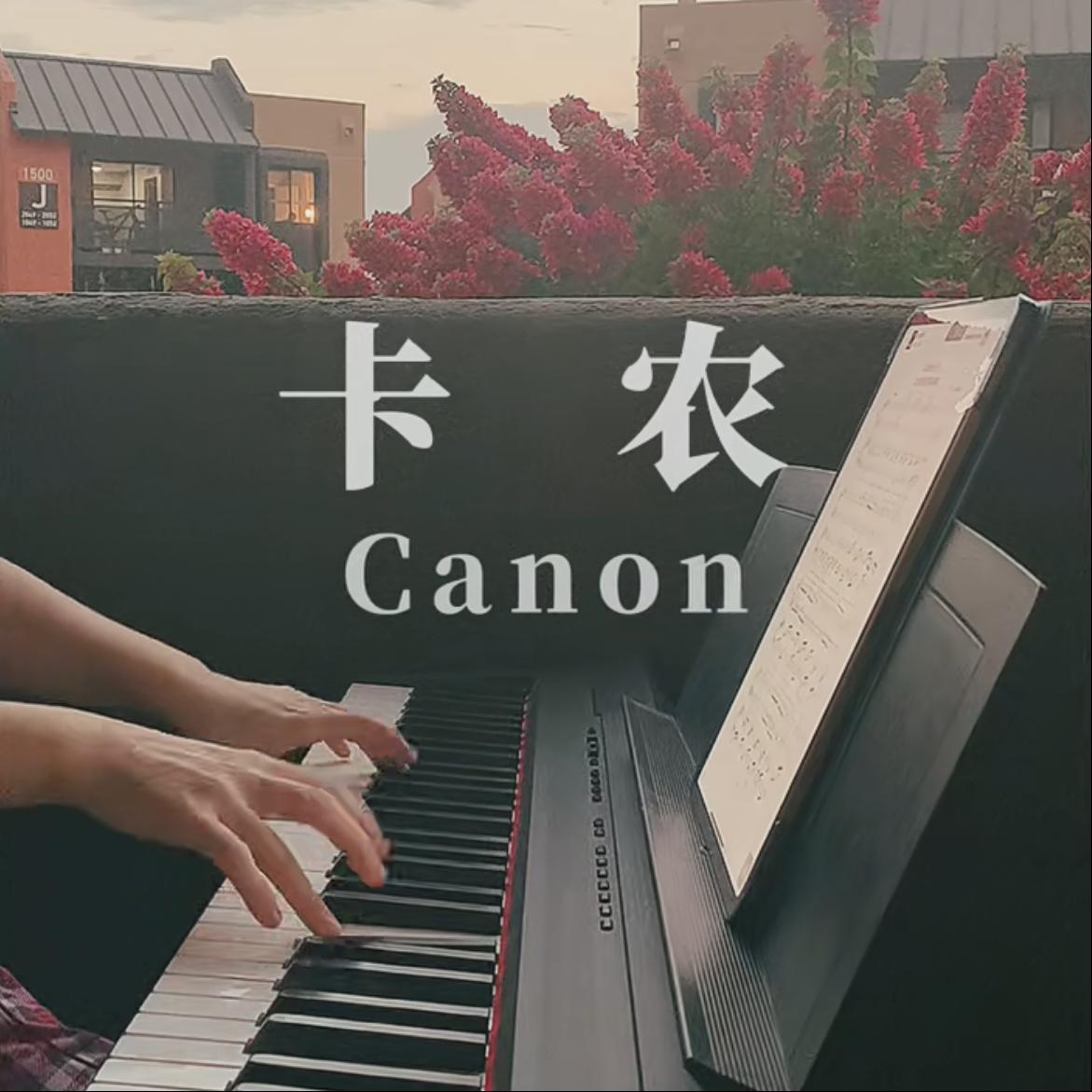 卡农●初学版钢琴谱