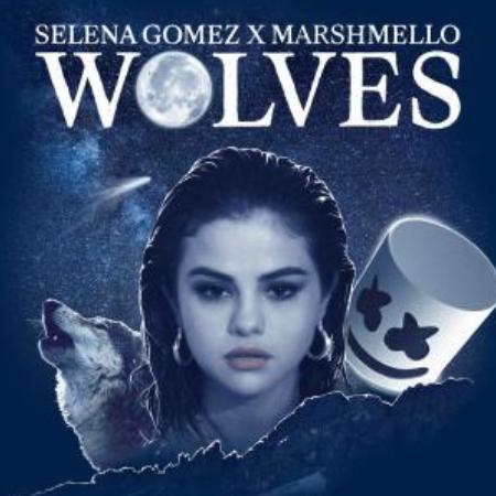 《Wolves》Selena Gomez热门单曲钢琴谱