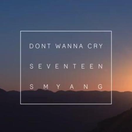 《不想哭》(Don't Wanna Cry)(Seventeen热门单曲)钢琴谱