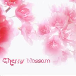 October - Cherry Blossom 【独奏谱】钢琴谱