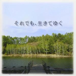 辻井伸行 - 花水木の咲く頃 (花水木绽放时)【纯音乐钢琴谱】钢琴谱