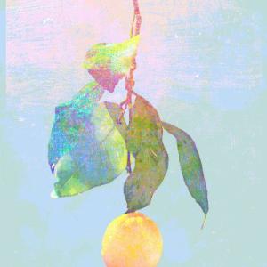 《Lemon》极限还原x超燃炫技(C调 - Cuppix编配)(米津玄师 柠檬)钢琴谱