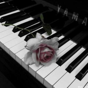 夜的钢琴曲八---石进---D大调钢琴谱