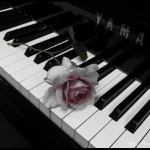 夜的钢琴曲十四--石进--C大调钢琴谱
