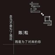 走马-金老师独奏谱钢琴谱