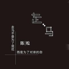 走马-金老师独奏(简化)谱钢琴谱