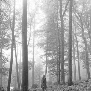 exile【弹唱(附和声)谱】泰勒·斯威夫特Taylor Swift霉霉folklore「一撇撇耶」