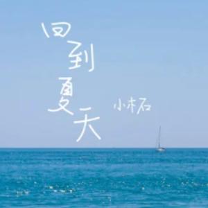 小木石《回到夏天》超高还原 独奏版