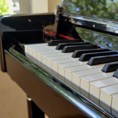 我在钢琴谱