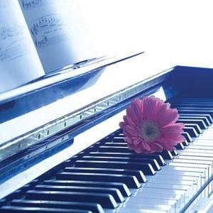 断桥残雪(简单好听)钢琴谱