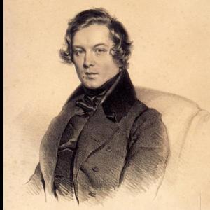 舒曼 狂欢节 肖邦 钢琴谱带指法原版高清钢琴谱