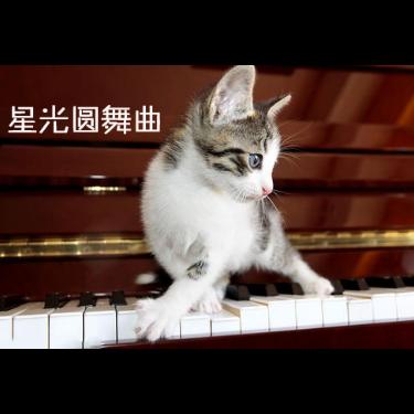 布雷纳德 星光圆舞曲钢琴谱