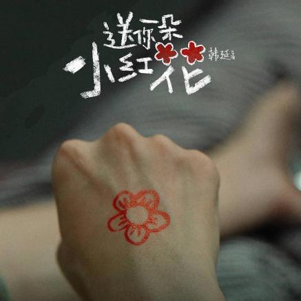送你一朵小红花(无转调)-赵英俊〖简易动听〗
