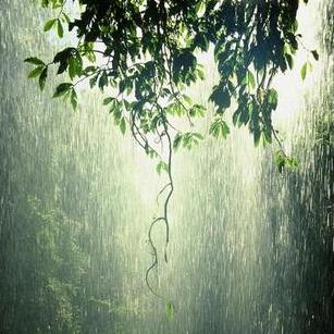 Kiss the Rain钢琴简谱-数字双手-이루마
