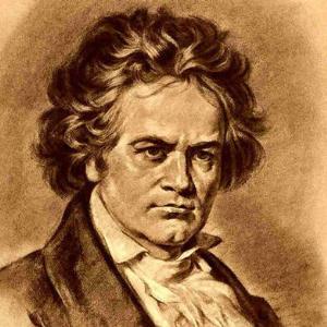 贝多芬-Piano Sonata WoO 47 No.1第一乐章