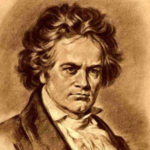 贝多芬-Piano Sonata WoO 47 No.2第一乐章