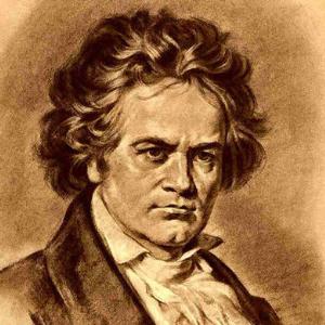 贝多芬-Piano Sonata WoO47 No.3第三乐章