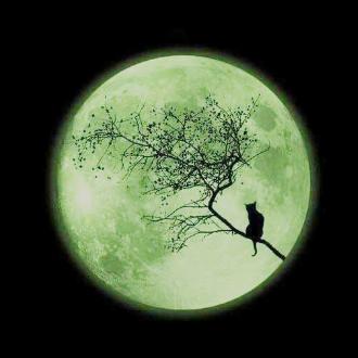 月色微光(MoonGlow -Lunalight style)终章——『忧伤歌声』独奏版