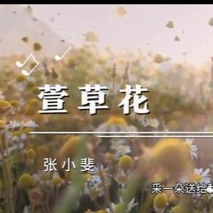 萱草花C大调 最抒情版本 -附歌词