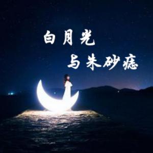 白月光与朱砂痣(C调简易演奏版)钢琴谱