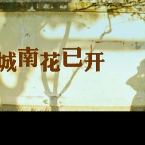 城南花已开 完美改编版钢琴谱