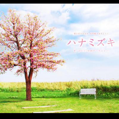 【高还原扒谱】《花水木》主题曲-「ハナミズキ」広桥真纪子 ver.钢琴谱