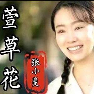 C调-萱草花-张小斐〖丰富版〗钢琴谱
