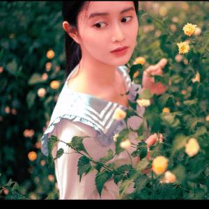 夏野与暗恋 超经典名曲【你一定听过可能不知道曲名】钢琴谱