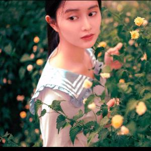 夏野与暗恋原调 超经典名曲【你一定听过可能不知道曲名】钢琴谱
