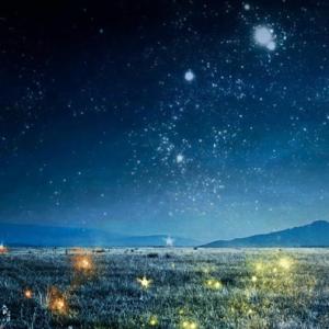 Sleepless Starlight-羽肿钢琴谱