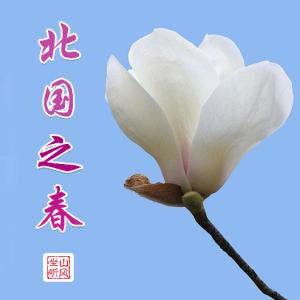 北国之春——唯美入门版(大音符)钢琴谱