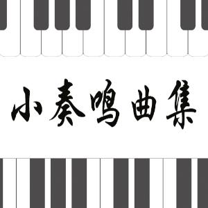 49.舒伯特-即兴曲Op.142 No.3 B大调钢琴谱