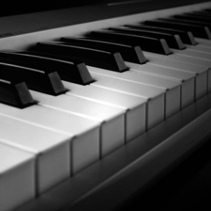 卡农-初学宝宝版钢琴谱